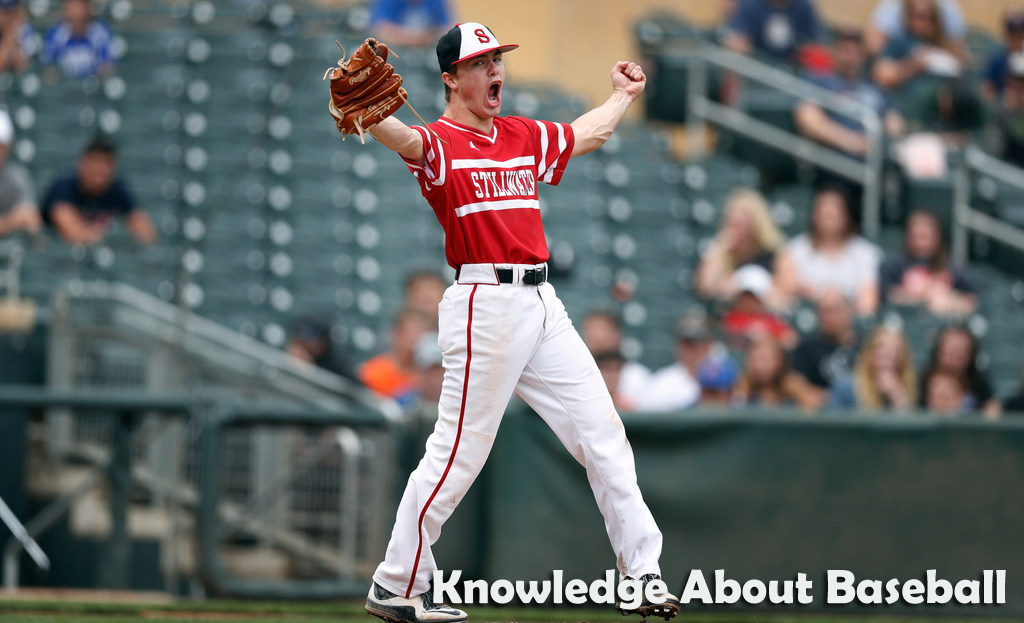 Looking for Knowledge About Baseball? You Should Check This Out Write-up!