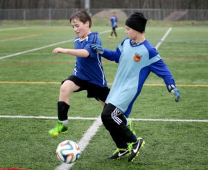 Soccer Field Sizes Metro Youth Soccer League